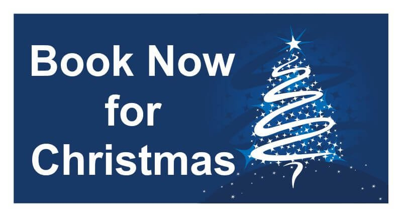 Christmas Banners.Book Now For Christmas Pvc Banner Blue