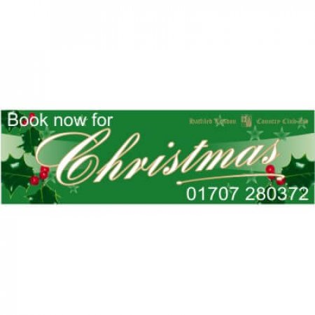 Fully Printed Christmas Holly Banner