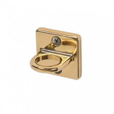 Polished Gold Wall Plate With Rope